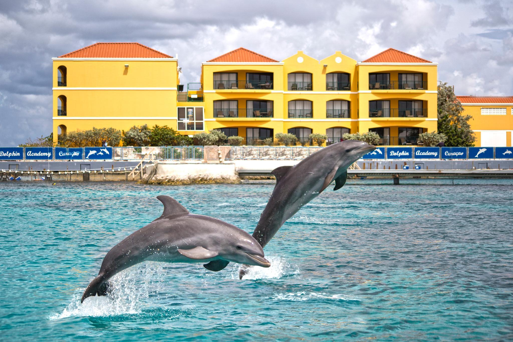 The Royal Sea Aquarium Resort