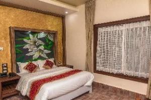 丛林游猎洛吉酒店 (Jungle Safari Lodge)