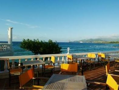 Starfish Grenada