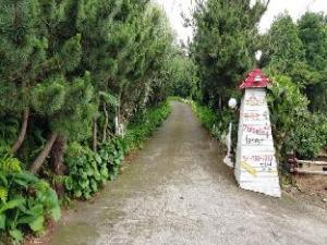 Dreaming Forest Pension