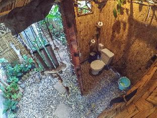 picture 2 of Amazing Gecko Bamboo Room