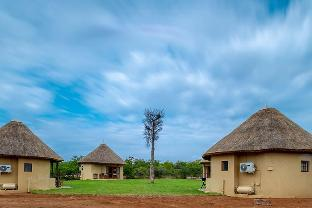 Фото отеля Mopane Bush Lodge