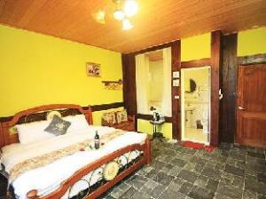 Hotel Puli City European