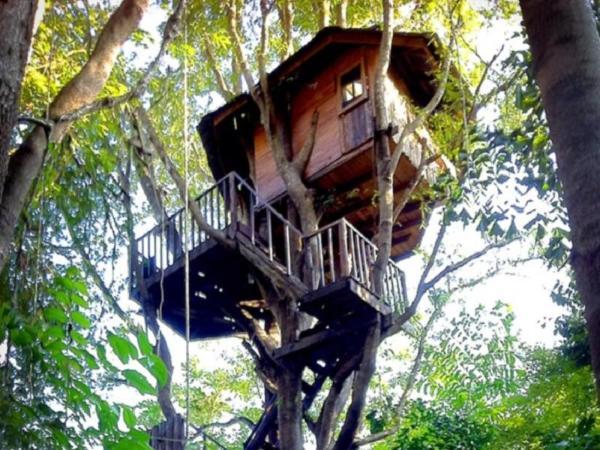 Rabeang Pasak Tree House Resort Chiang Mai