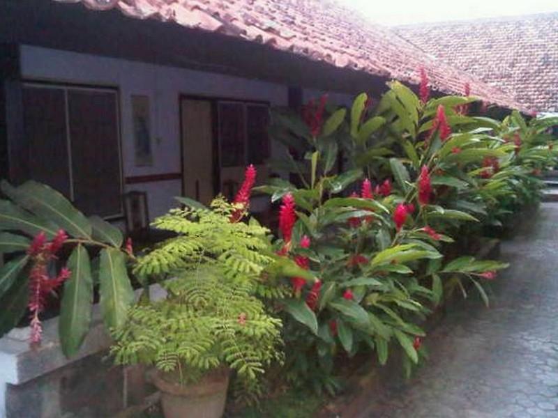 Hotel Wisata Lombok