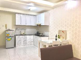 Spacious Apartment in District 7 centre