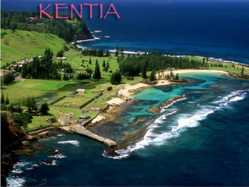 Kentia Holiday Accommodation 5