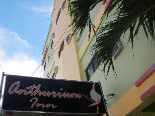 picture 1 of Anthurium Inn