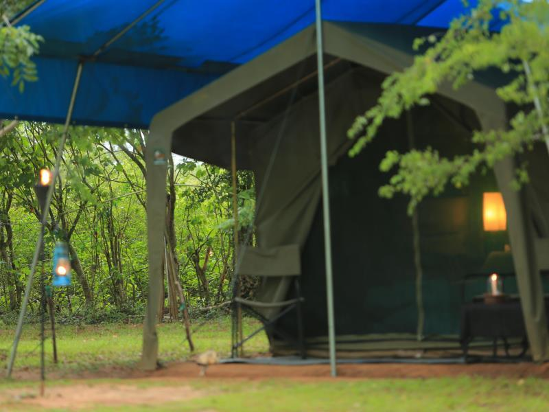 Big Game Camp   Yala