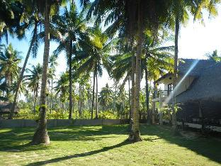 picture 4 of Buddha's Surf Resort