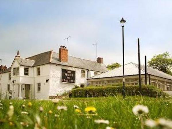 The Plume of Feathers Newquay