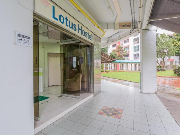 Lotus Hostel
