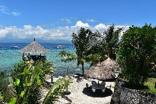 picture 1 of Dolphin-House Resort-SPA-Diving