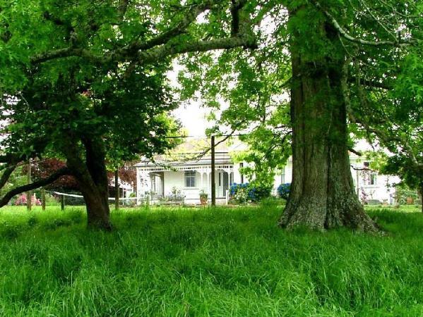 Pedfield Country House Cambridge