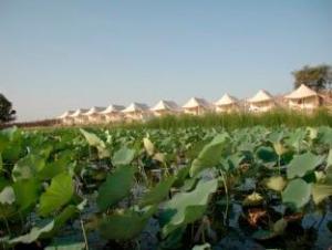 Pangarh Lake Retreat Resort