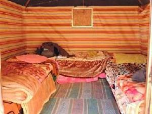 Bedouin Whispers Camp