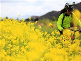 Bike Lijiang Lodge And Club