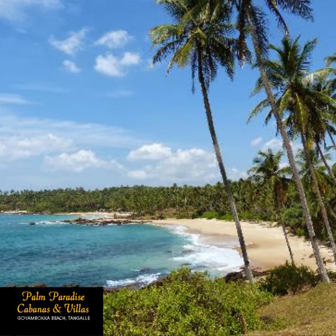 Palm Paradise Cabanas And Villas Beach Resort Tangalle