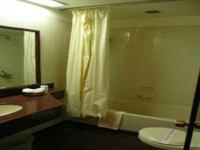 Usha Bundela Hotel 5