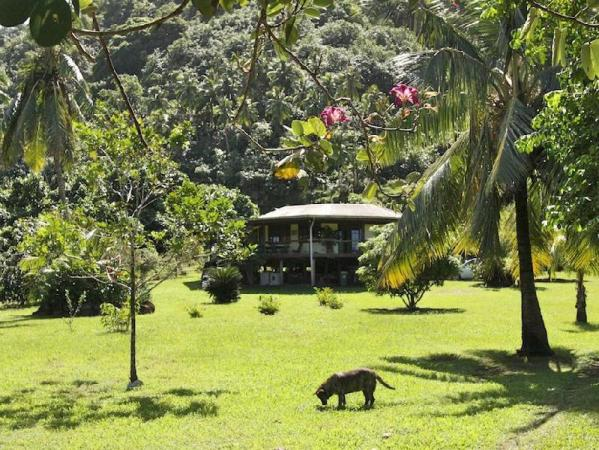 Green Room Villa Tahiti