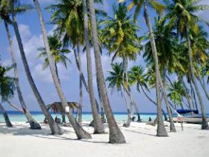Island Relaxing Guesthouse at Maafushi