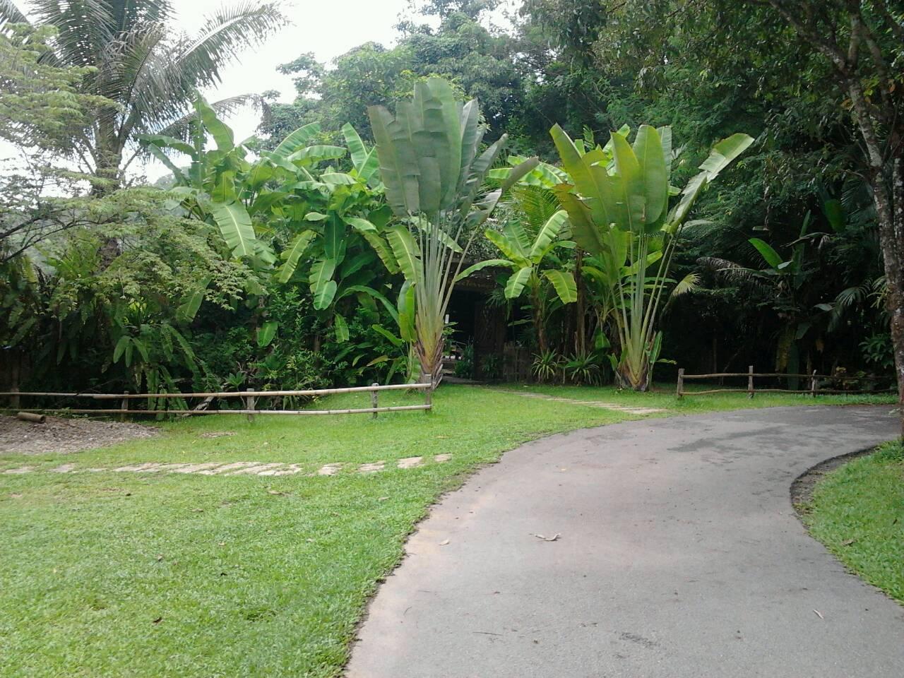 Fern Resort เฟิร์น รีสอร์ท
