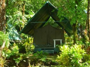 Corcovado Adventures Tent Camp Guest Houses image