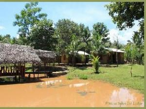 Pokuna Safari Eco Lodge