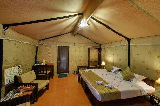 Фото отеля Lion Safari Camp
