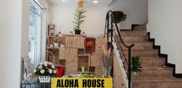 Aloha House Saigon Ho Chi Minh City
