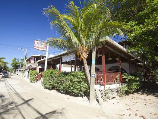 Splash Inn Dive Resort And Villas