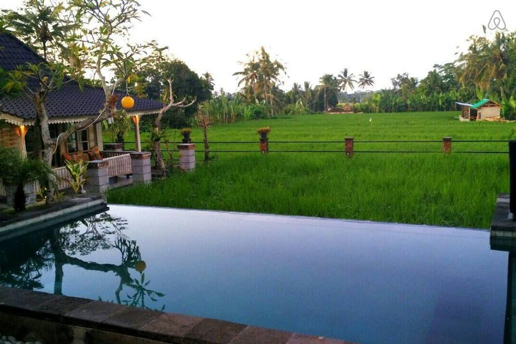 Review Uma Caming Villa with infinity swimming pool