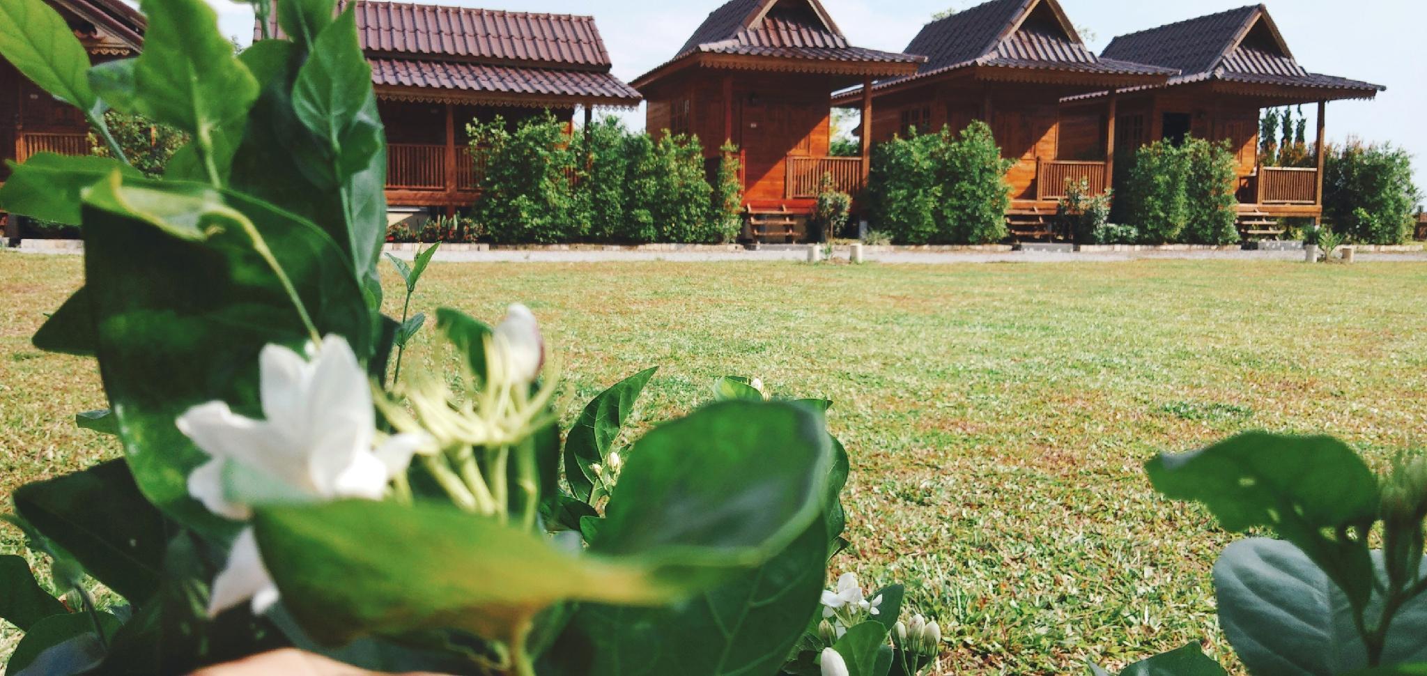 Imsuk Homestay Chiang Rai