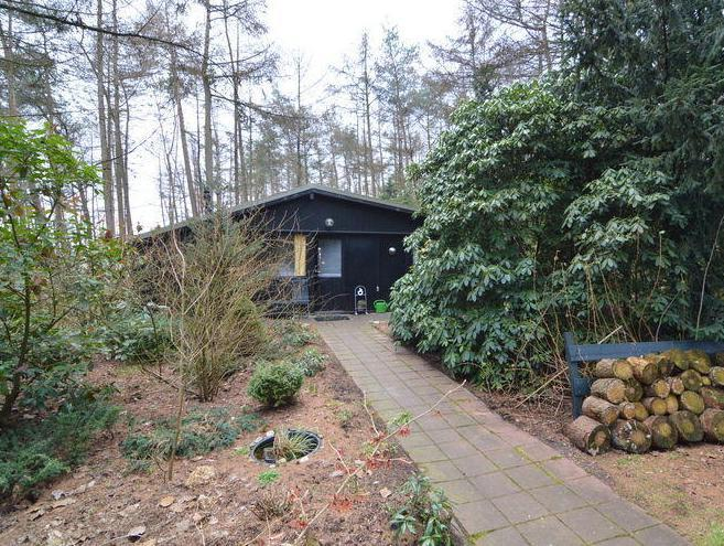 Lovely Bungalow In Giethmen Amid The Lush Forest