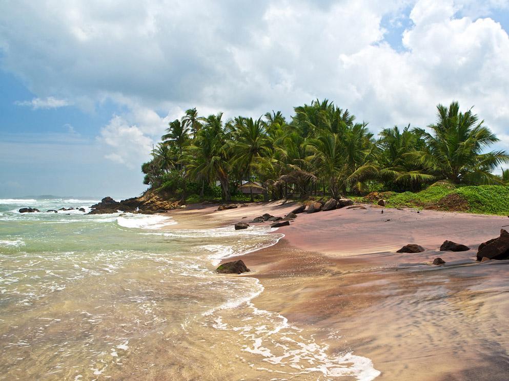 Underneath The Mango Tree   Beach And Spa Resort