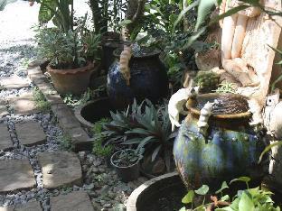 バンヤイ ブリ リゾート Bangyai Buri Resort