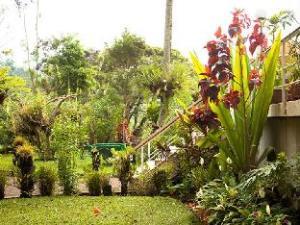 Bird of Paradise Hotel