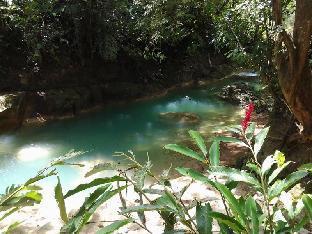 picture 5 of Panglao Villa