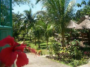 picture 4 of Toris Backpackers Paradise