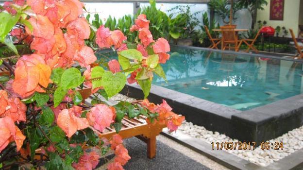 Puri Clinton Bali Homestay