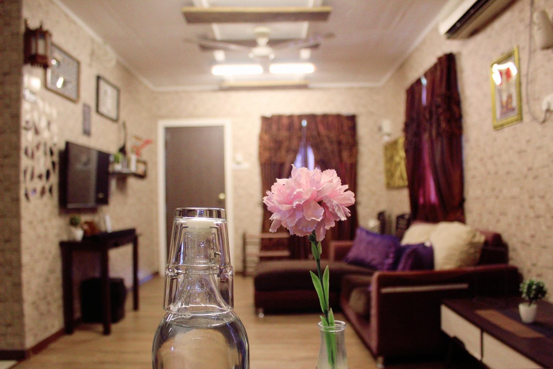 Ice Tea Eco House 'Cinematic View'