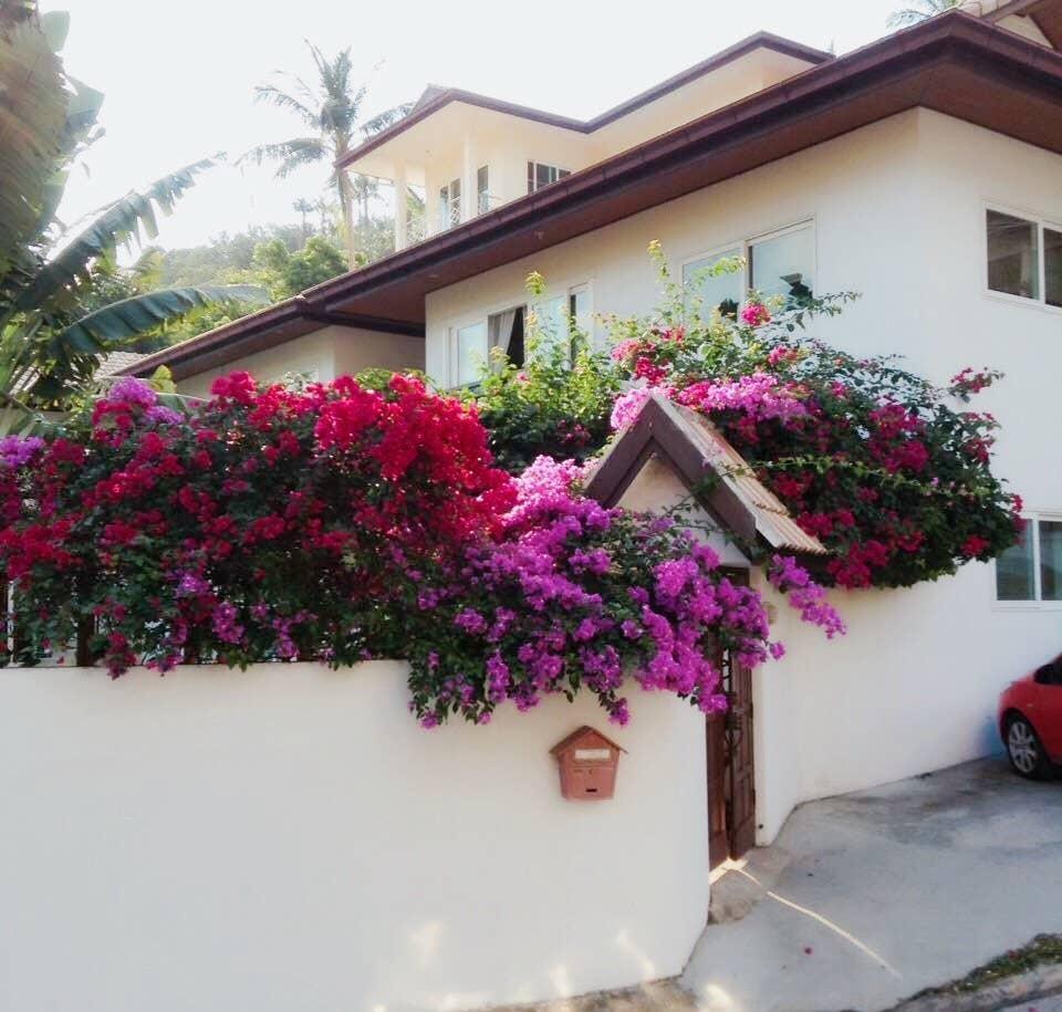 Best Price and  Best Location :-) บ้านเดี่ยว 2 ห้องนอน 1 ห้องน้ำส่วนตัว ขนาด 75 ตร.ม. – เฉวงน้อย