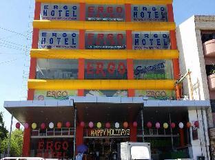 picture 3 of Vigan Ergo Hotel