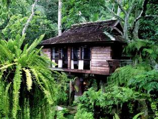 Fern Paradise Hotel - Chiang Mai