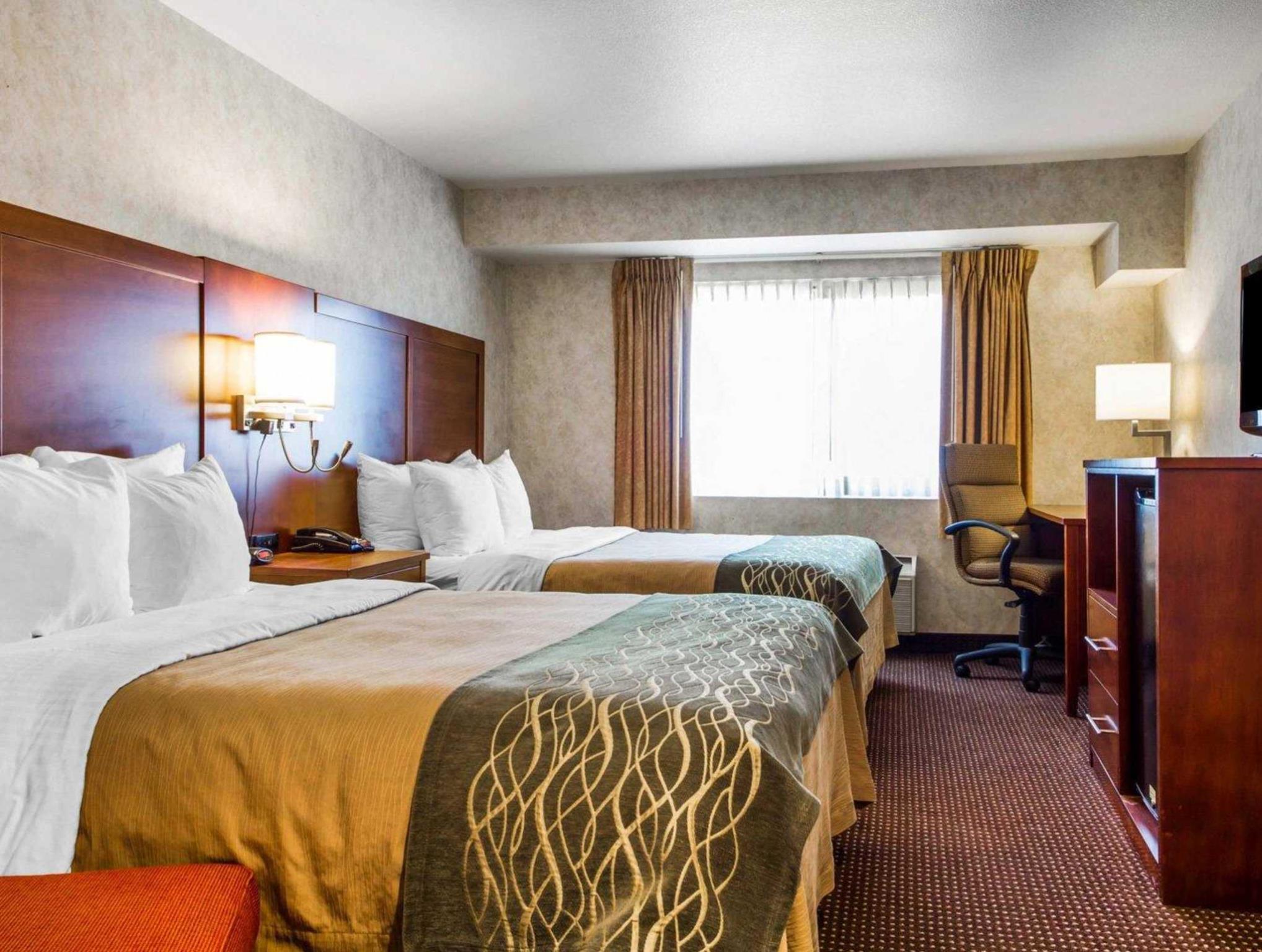Comfort Inn Reviews