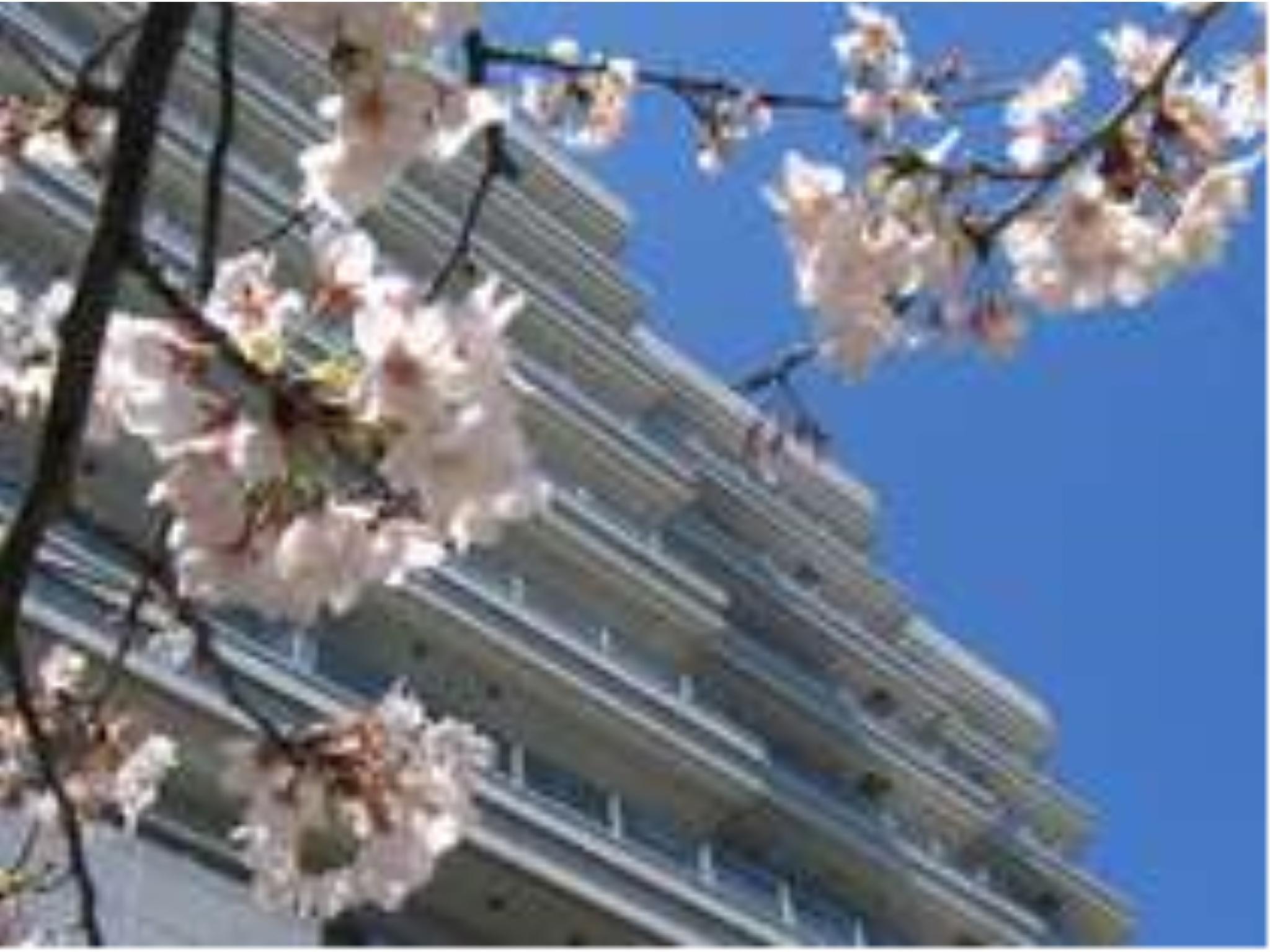 Ito Hotel New Okabe
