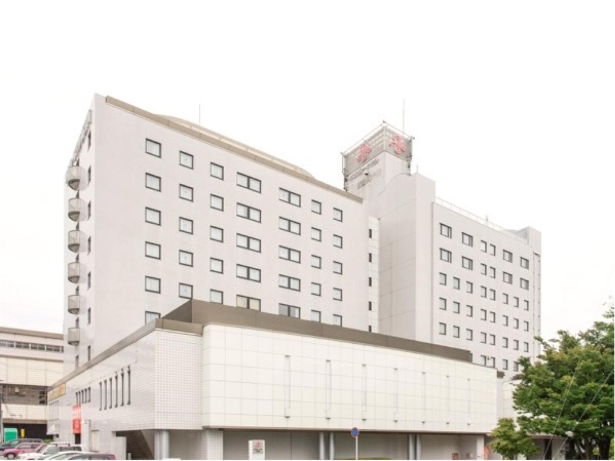 Tokyo Dai Ichi Hotel Shin Shirakawa