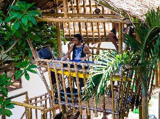 picture 3 of Jeepney Hostel and Kite Resort