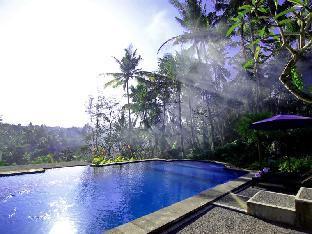 Villa Capung Mas