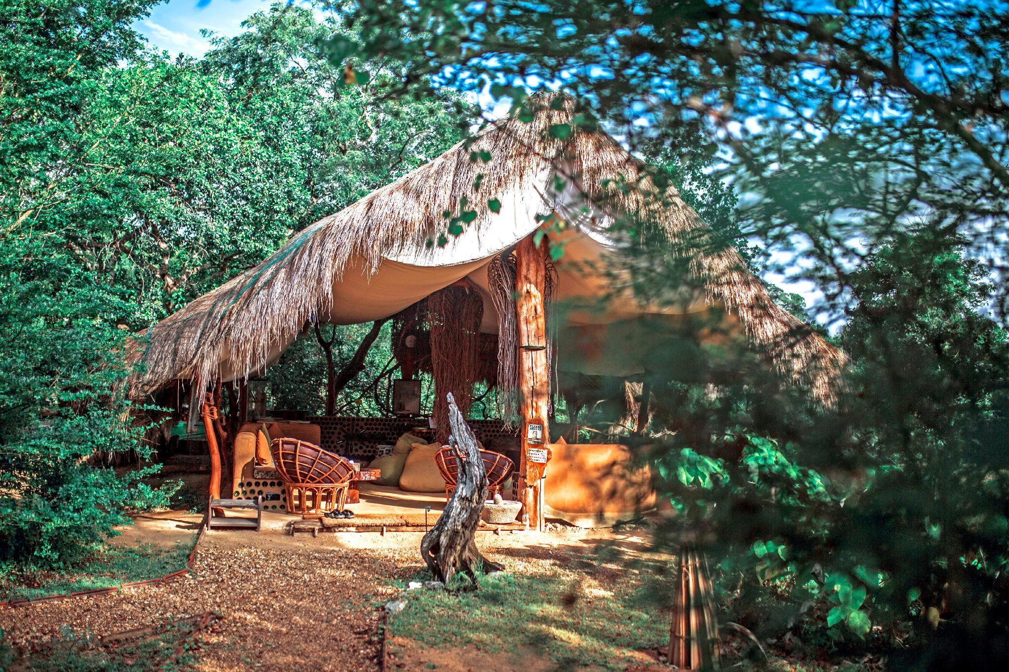 Noel Rodrigo's Leopard Safaris   Yala